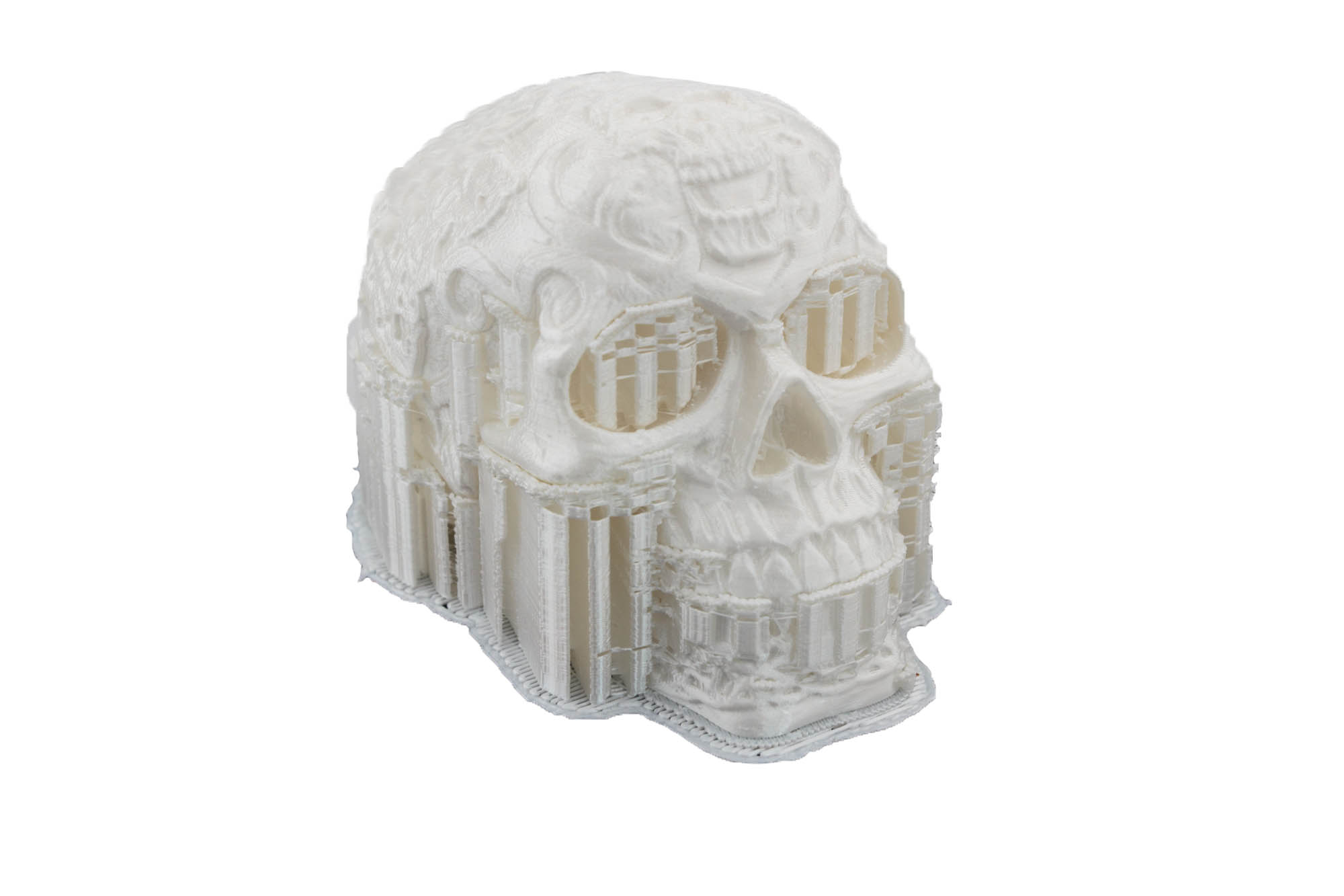 Celtic Skull with support