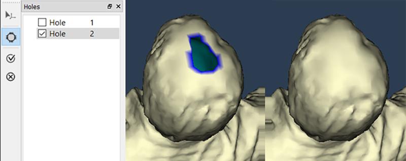 calibry nest