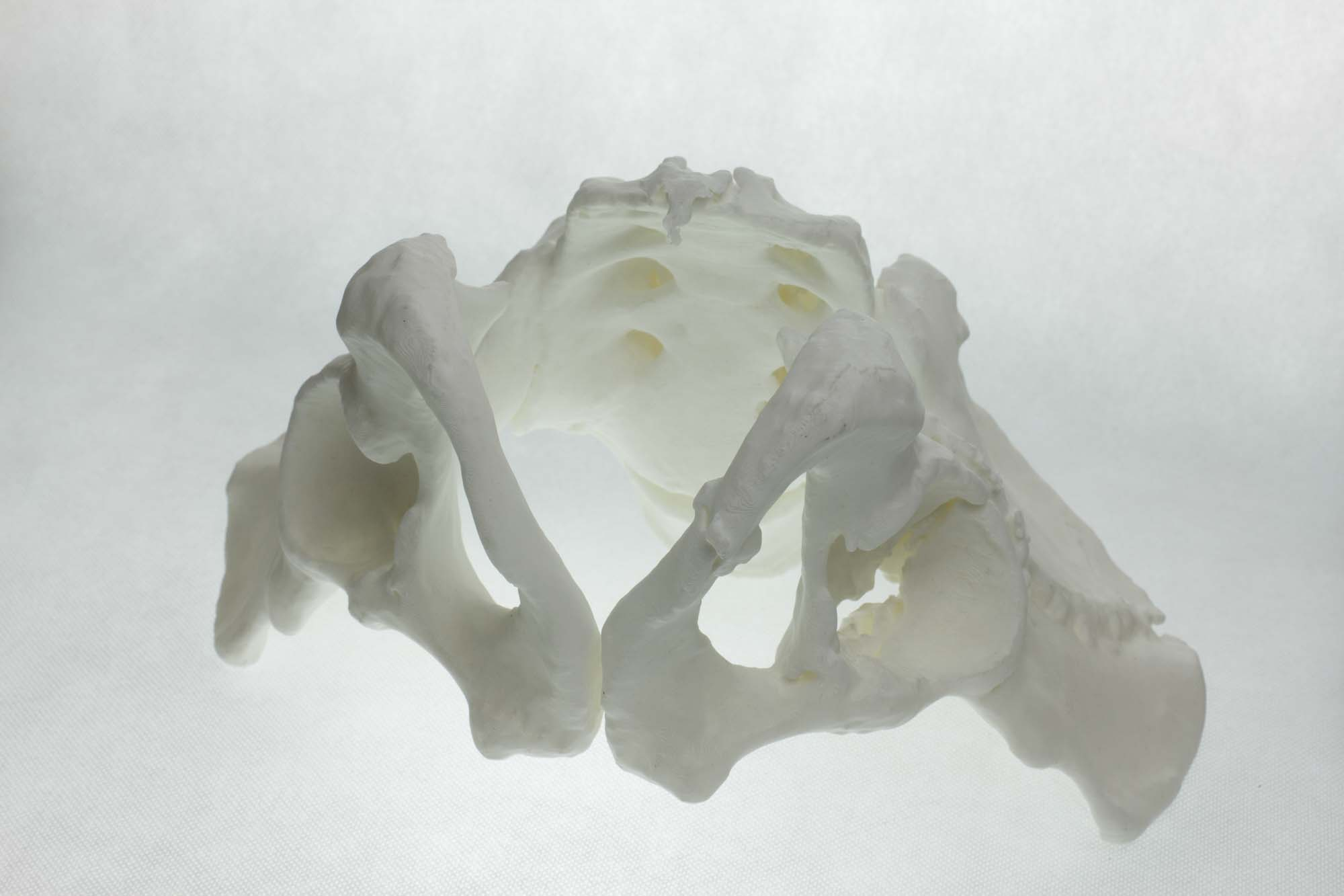 Large 3D printing without warping or cracking
